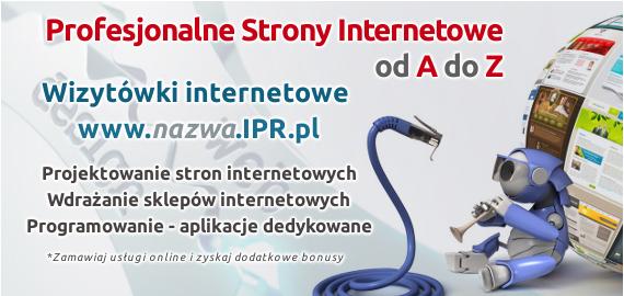 Profesjonalne strony internetowe dla firm z Rzeszowa i nie tylko. Formalności załatwiamy online.