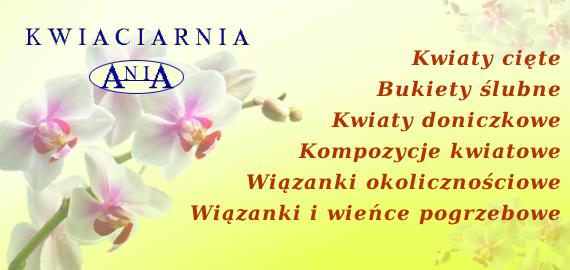 Kwiaciarnia Ania - Kwiaty, bukiety, wiązanki okolicznościowe