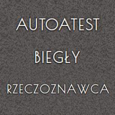 autoatest-biegly-rzeczoznawca.png