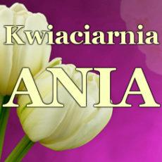 kwiaciarnia-ania-rzeszow.jpg