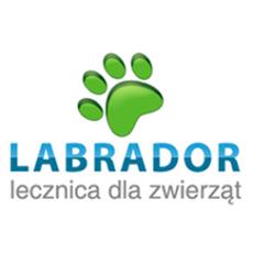 labrador-weterynarz-lecznica-rzeszow.png