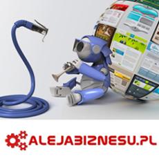 strony-internetowe-rzeszow-projektowanie-stron-www_350.png